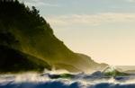 find-surfer